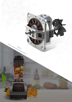High Speed Blender Brushless DC Motor
