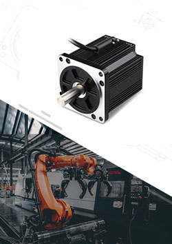 Packing Robot Brushless Motor