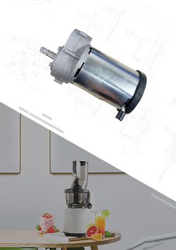 Slow Juicer Brushed DC Motor With Gearbox